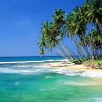srilankalogo