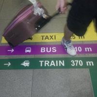 Lotnisko Chopina: kolorowe linie pomogą pasażerom trafić do autobusu, pociągu oraz taksówek