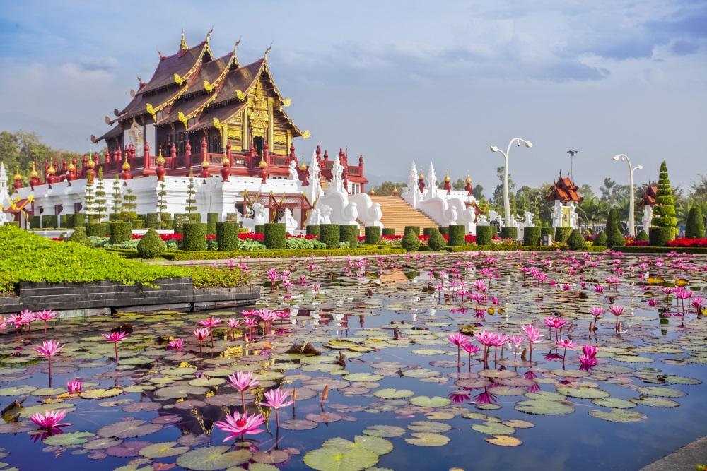 Chiangmai royal pavilion with lotus flower.