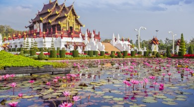 chiang mai Chiangmai royal pavilion with lotus flower.