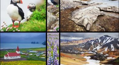 islandia Icelandic landscapes collage