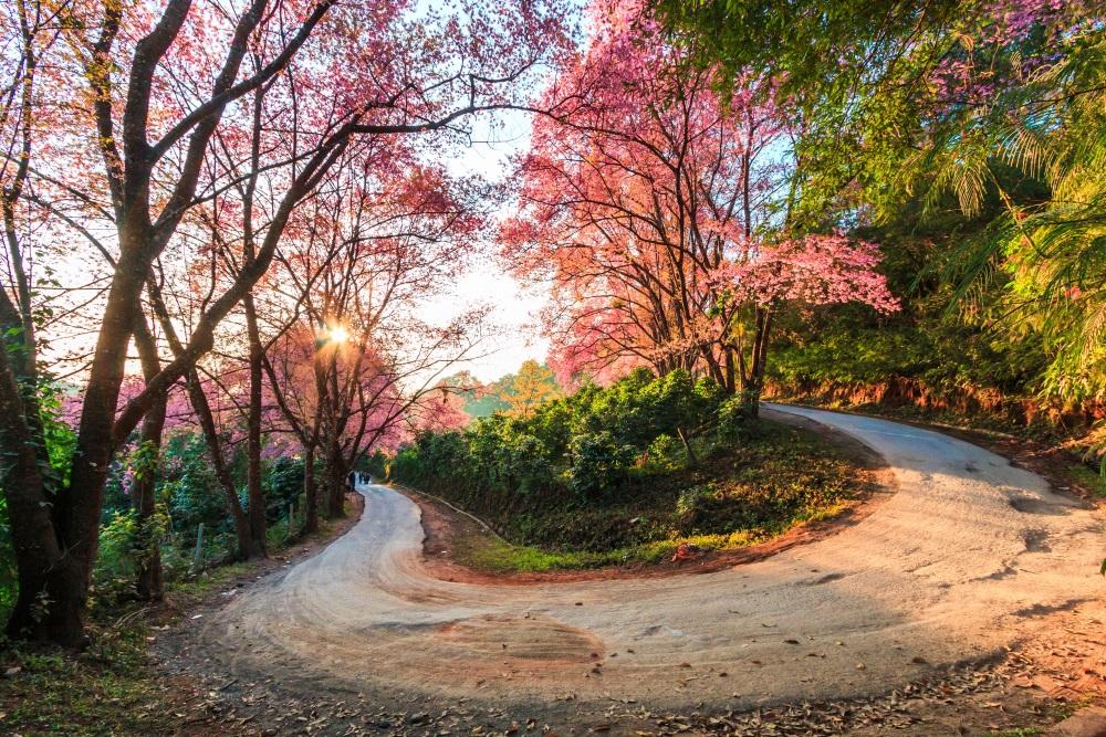 chiang mai Chiang-mai-widok-zakret-Depositphotos_64664821_original-1000x667px