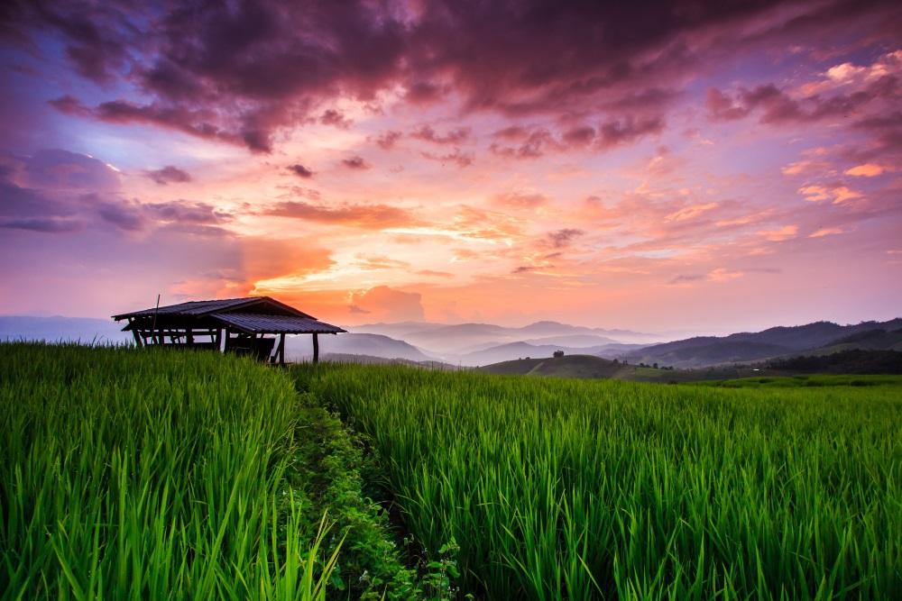 Chiang Mai z Polski – Tajlandia za mniej niż 2000zł